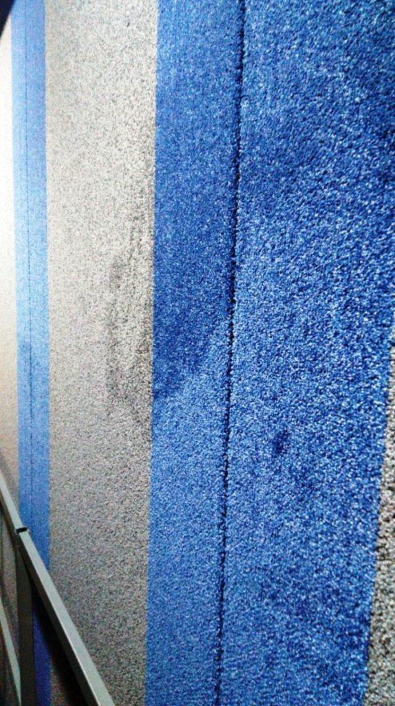 Frieze Carpet Rugs